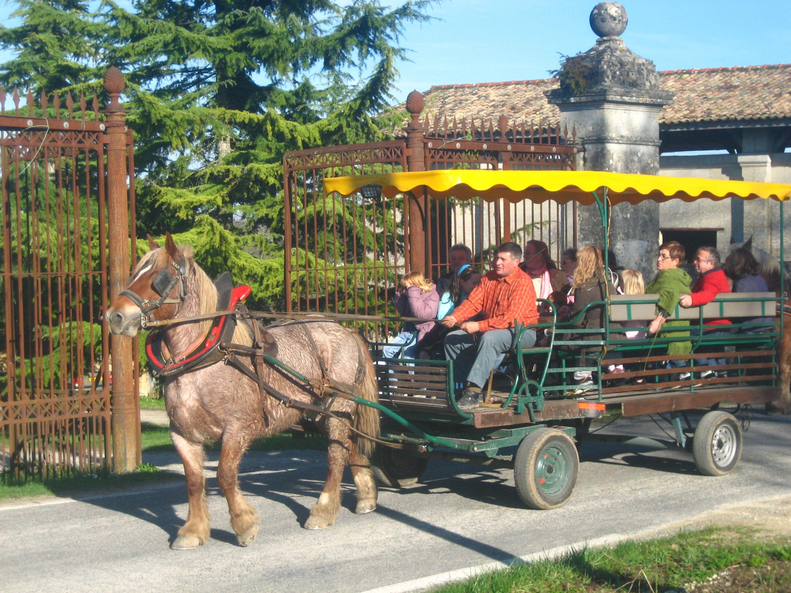 visite oenotourisme chateau de l'hurbe - balade